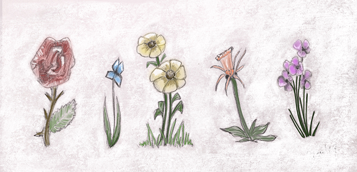 Pencil doodle of various flowers, painted in Procreate.