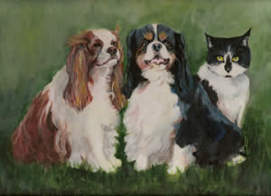 Helen's dogs and cat